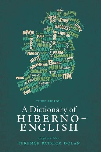 9780717143924: A Dictionary of Hiberno-English: The Irish Use of English