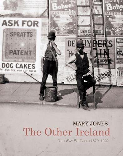 9780717150496: The Other Ireland: Changing Times 1870-1920