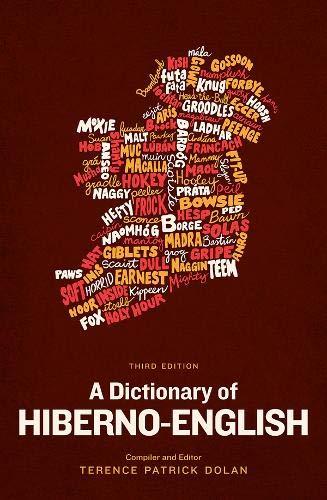 9780717158607: A Dictionary of Hiberno-English