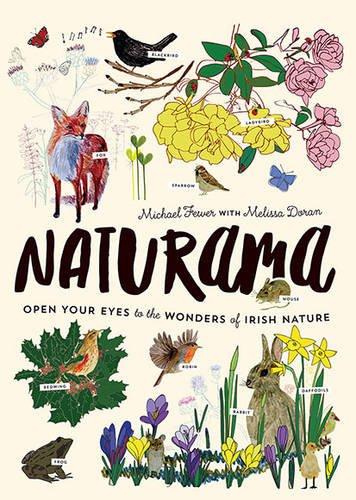 9780717169801: Naturama: Open Your Eyes to the Wonders of Irish Nature
