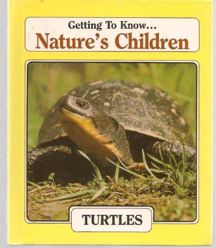 9780717219469: Turtles