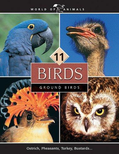 9780717257317: Birds (World of Animals (Danbury, Conn.), V. 11-20.)