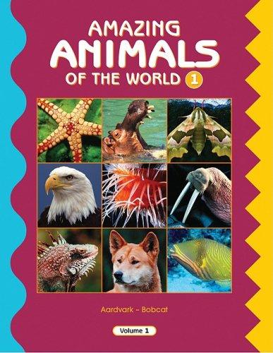 9780717262250: Amazing Animals of the World Set 1