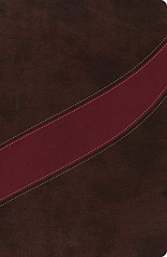 9780718001988: NASB, The MacArthur Study Bible, Leathersoft, Brown/Red