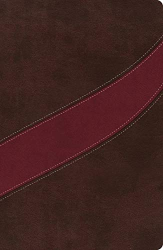 Nasb, the Macarthur Study Bible (Leather)