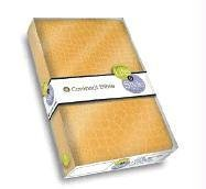 Life & Style Compact Bible - Crocodile Yellow: Spring Line 2005 (0718009444) by Thomas Nelson