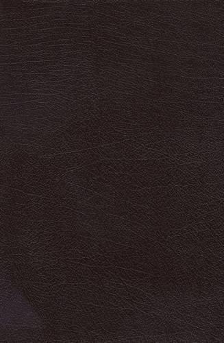 9780718012625: The Charles F. Stanley Life Principles Bible (NKJV, Burgundy Bonded Leather)