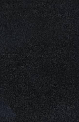 9780718012946: The Charles F. Stanley Principles Bible Life (Black)