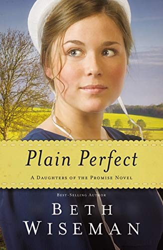 9780718030964: Plain Perfect (A Daughters of the Promise Novel)