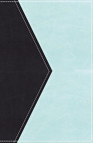 Kjv Ultraslim Reference Bible Imitation Leather Format: Slides