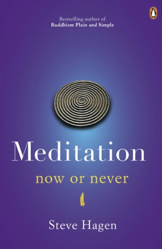 9780718193041: Meditation Now or Never