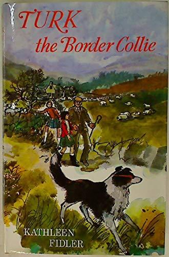 9780718820749: Turk the Border Collie