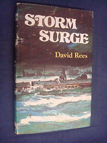 9780718821708: Storm Surge