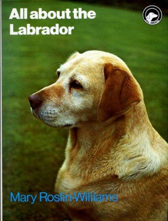 All About the Labrador (All About Series): Roslin-Williams, Mary