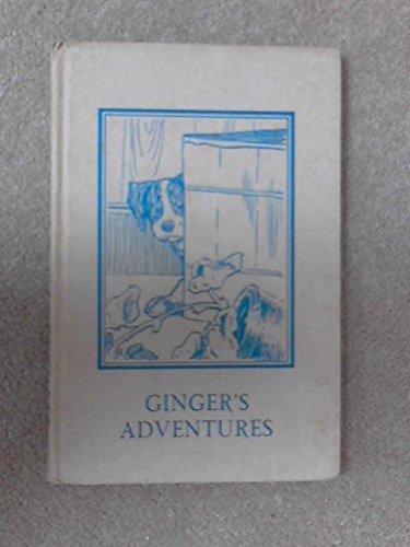 Ginger's Adventures (Rhyming Stories): A.J. Macgregor, W.