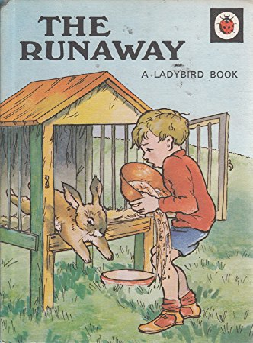 The Runaway (Rhyming Stories): A.J. Macgregor, W.