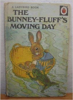 The Bunney-Fluff's Moving Day (Rhyming Stories): A.J. Macgregor; W.