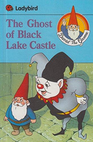 9780721412627: David the Gnome: Ghost of Black Lake Castle