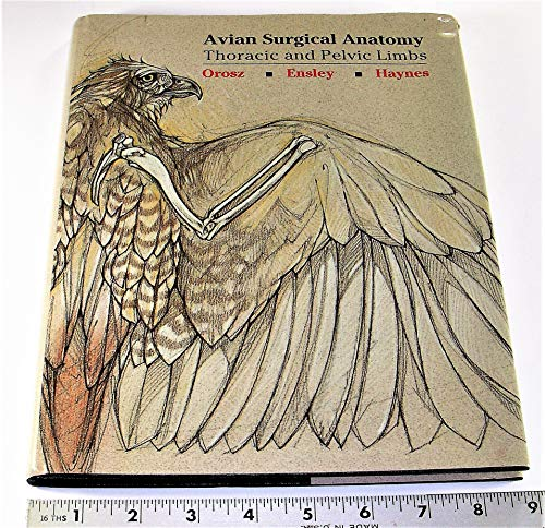9780721636542: Avian Surgical Anatomy: Thoracic and Pelvic Limbs