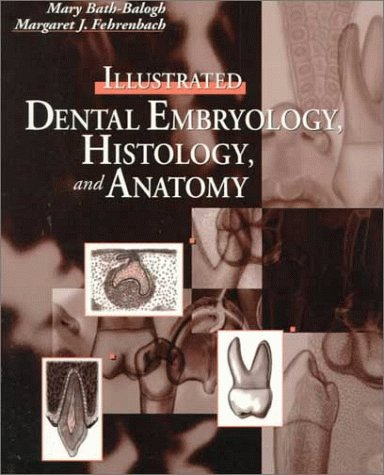 9780721666877: Illustrated Dental Embryology, Histology, and Anatomy, 1e