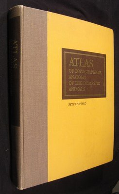 Atlas of Topographical Anatomy of Domestic Animals - AbeBooks
