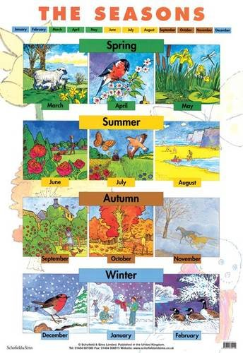 9780721755144: Seasons (Laminated posters)