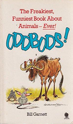 9780722138090: Oddbods!