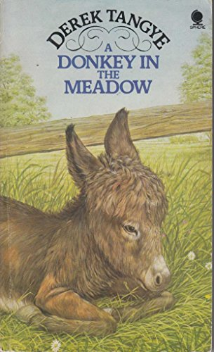 9780722183762: Donkey In The Meadow