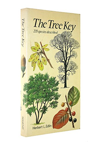 9780723220350: The Tree Key