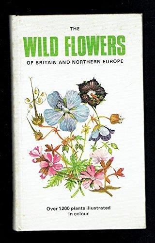 9780723224181: Wild Flower Key: British Isles and North West Europe