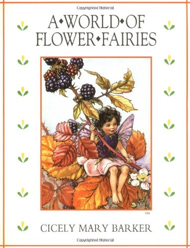 9780723240020: The World of Flower Fairies