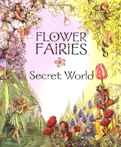 9780723248439: Flower Fairies Secret World