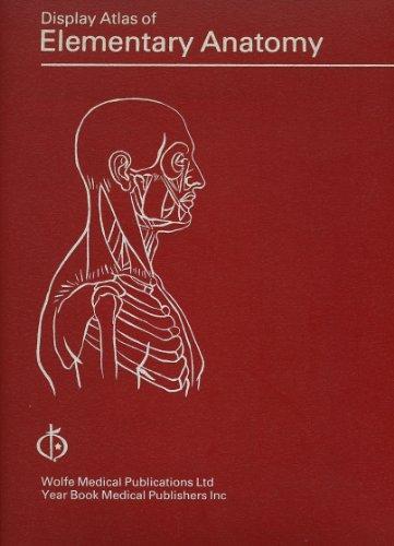 9780723407485: Display Atlas of Elementary Anatomy