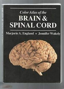 9780723408703: A Colour Atlas of The Brain and Spinal Cord