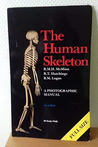 9780723409588: Human Skeleton, 1e