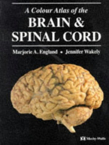 9780723416968: A Colour Atlas of The Brain and Spinal Cord