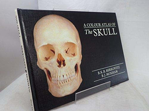Berkovitz B K B - AbeBooks