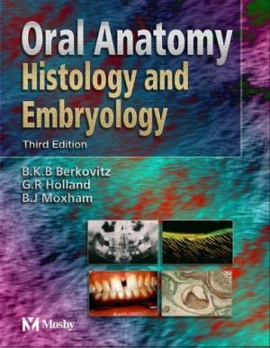 9780723433439: Oral Anatomy Histology & Embryology