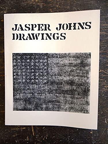 9780728700116: Jasper Johns drawings