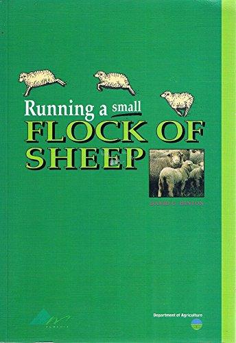 9780730629733: RUNNING A SMALL FLOCK OF SHEEP