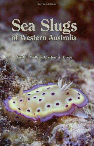 9780730955238: Sea Slugs of Western Australia