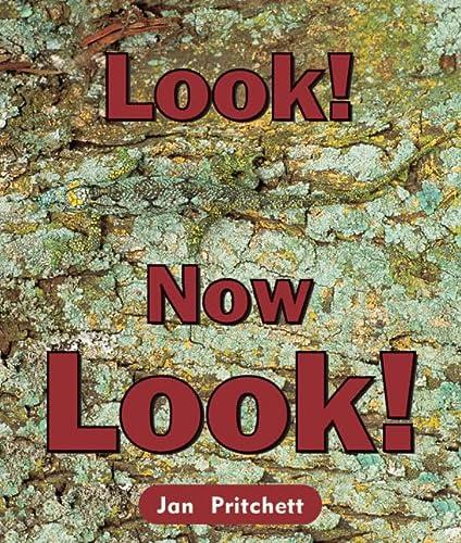 Rigby Literacy Emergent Level 1: Look! Now: Jan Pritchett