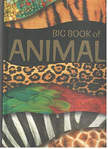 9780732261283: Big Book of Animals