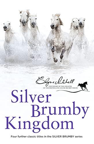 9780732297695: Silver Brumby Kingdom