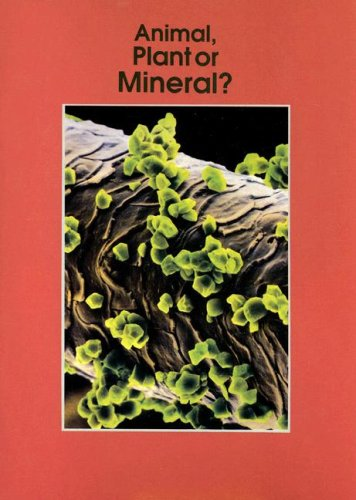 9780732708511: Animal, Plant or Mineral? (Informazing)