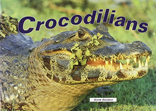 Crocodilians (Literacy Links Picture Books): Anne Gordon