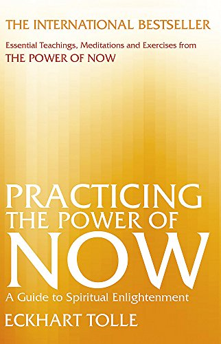 9780733627668: Practicing the Power of Now