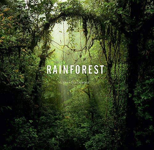 Rainforest (Hardcover): Lewis Blackwell