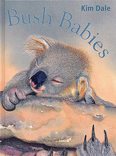 9780734408754: Bush Babies
