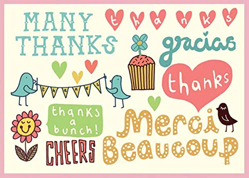 9780735328440: Kate Sutton Many Thanks Parcel Thank You Notes